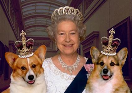queen-and-corgisforwordpress.jpg