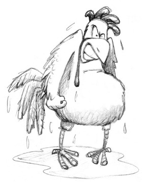 wet-hen2